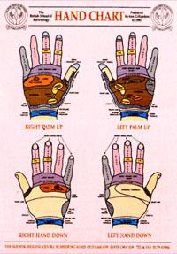 BSoR Hand Reflexology Wall Chart