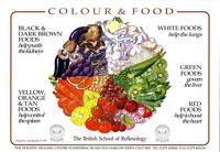 New Food Chart